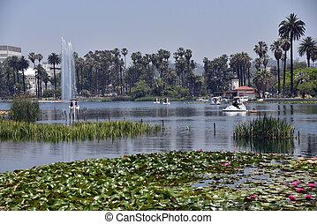 Beautiful lake in an urban park
