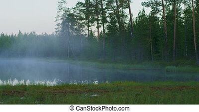 Beautiful lake in green finnish forest with morning fog -...