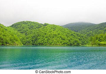 Beautiful lake in spring time