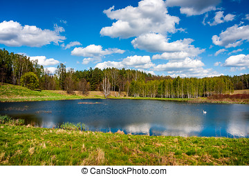 Beautiful lake in the forest - Forest lake. Beautiful lake...