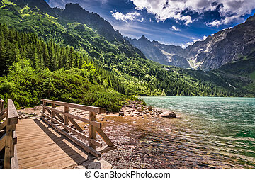 Beautiful lake in the mountains at summer