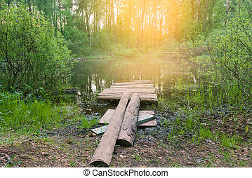 Beautiful lake in wild forest. Fishing pier on lake.