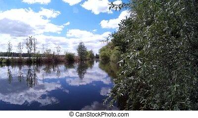 Beautiful Lake Landscape With Forest on the Bank Reflecting in Still Water, Ruzhicna, Khmelnytskyi, Ukraine