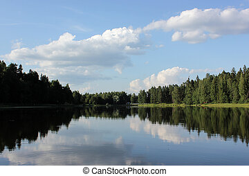 beautiful lake landscape with trees and herbs.
