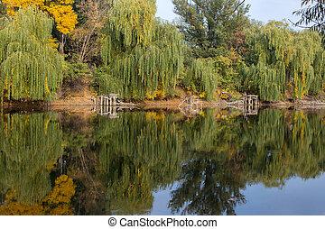 Beautiful lake, reflection of tree in a lake