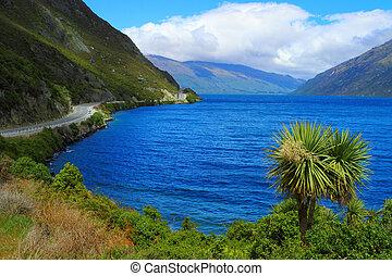 Beautiful lake shore in South Island, New Zealand