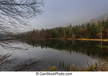 beautiful lake with clear water an reflection from the forest in the mountains