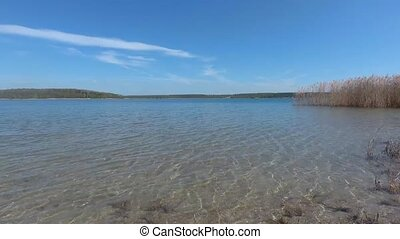 Beautiful lake with reeds on summer day video