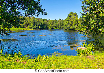beautiful lake with ripples on blue water, in the middle of a green park under a clear blue sky