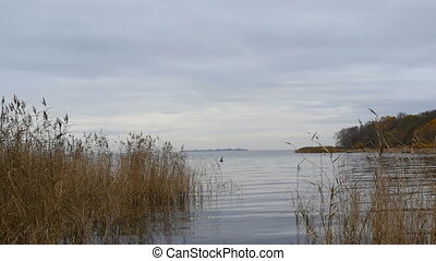 fishing on the lake in the autumn among dry reeds beautiful landscape