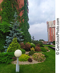 Beautiful landscape design of the house territory, with coniferous trees.