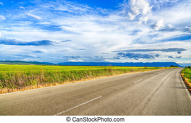 Beautiful landscape field of wheat, road, clouds and mountains. HDR image