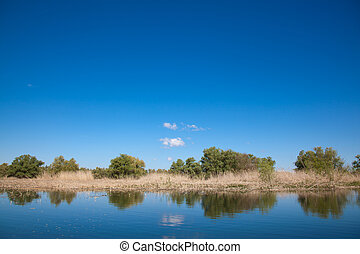 Danube Delta - Beautiful landscape from the Danube Delta ...