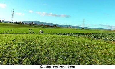 Beautiful Landscape Green Nature
