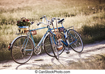 Beautiful landscape image with bicycle and flower at sunset