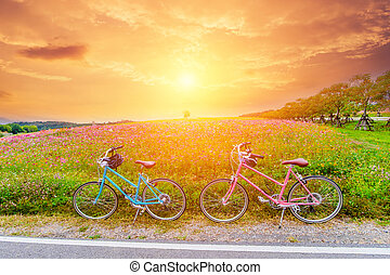 beautiful landscape image with bicycles at sunset