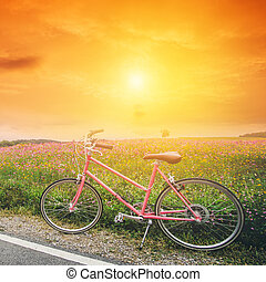 beautiful landscape image with pink bicycle at sunset