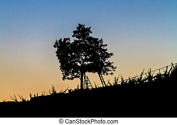 Beautiful landscape image with tree silhouette at sunset