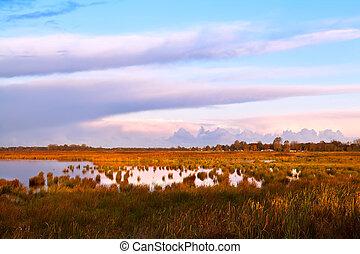 landscape in Drenthe at sunrise