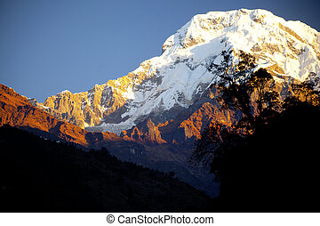 Beautiful landscape in Himalayas at the sunrise time, Annapurna area, Nepal