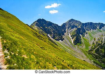 beautiful landscape in mountain