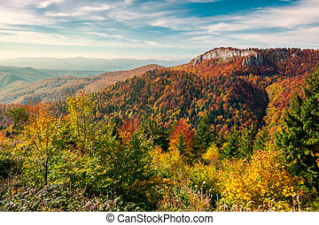 cliff above the forest in fall color