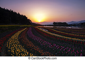 Beautiful landscape in South Korea, Namhae Idong reservoir, ...