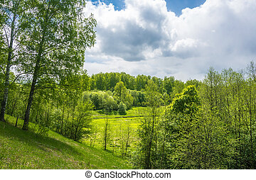 Beautiful landscape in the Central part of Russia.