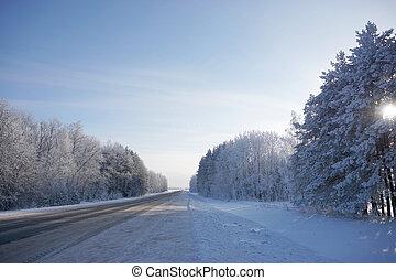 beautiful landscape in winter - beautiful water lilie in...