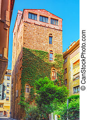 Beautiful landscape  living tower and historical view of the Florence. Italy.