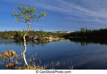 Beautiful Landscape of calm lake in Sweden