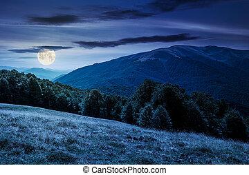 landscape of Carpathian mountains at night - beautiful...