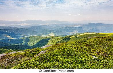 beautiful landscape of Carpathian mountains. rolling hill...