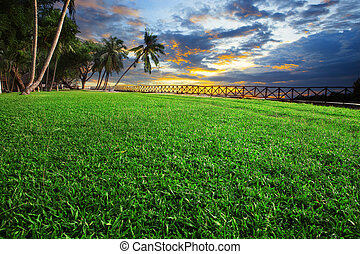 beautiful landscape of green grass field park against dusky sky