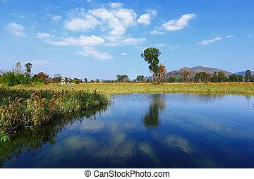 Beautiful landscape of Lake