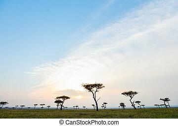 Masai Mara at sunset