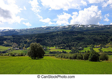 Beautiful landscape of Norway in summer, Scandinavian Europe.