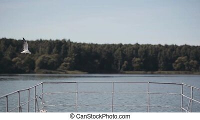 Beautiful landscape of river mooring and forest on the...