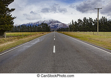 beautiful landscape of road to arthur's pass national park new zeland