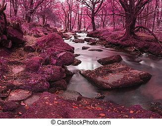 Beautiful landscape of surreal alternate colored landscape through woodlands
