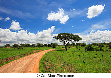 Tarangire national park - Beautiful landscape of Tarangire...