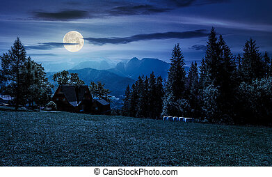beautiful landscape of Tatra Mountains at night in full moon...