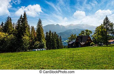beautiful landscape of Tatra Mountains. location Zakopane...