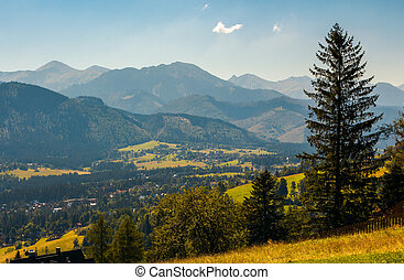 beautiful landscape of zakopane valley. popular tourist...