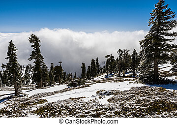 Beautiful landscape on Mount San Antonio (Mt Baldy), Los Angeles county, California