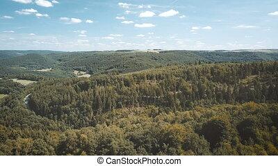 beautiful landscape overflight over woods