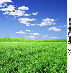 Beautiful landscape - Beautiful summer landscape. A green...