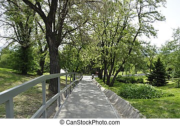 Beautiful landscape with alley in blossom and staircase