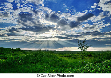 beautiful landscape with clouds and grass
