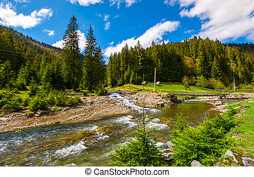 beautiful landscape with forest river in mountains. lovely...